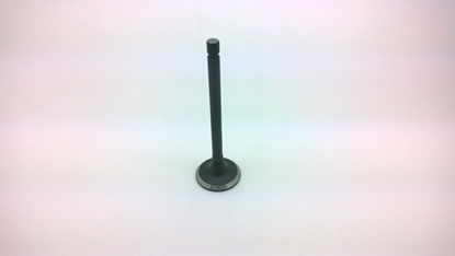 Picture of Cylinder Head Exhaust Valve