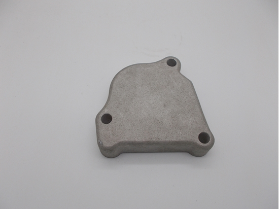 Picture of Cylinder Head Rear Cover