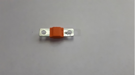 Picture of 30 Amp Fuse