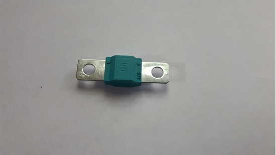 Picture of 40 Amp Fuse